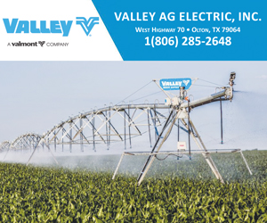 Valley Ag Electric - Box Ad
